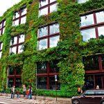 Вертикальный сад musee du quai Branly, проект Патрика Блана