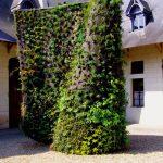 «Зеленая спираль». Проект Патрика Блана в имении Шомон-на-Луаре
