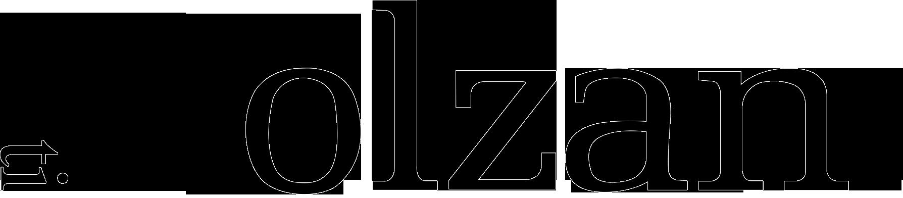 bolzan logo vettoriale con r (1)