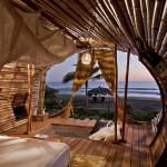 2_Treehouse Perch_Leonardo Palafox