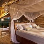 6_Treehouse Lounge View from Perch_Leonardo Palafox